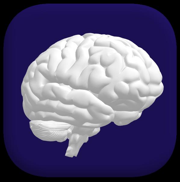 brainfinal-1